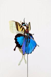 fee-insecte-graine-morceau-assemblage-08-533x800
